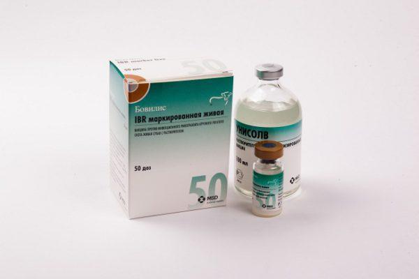 Вакцина Бовилис IBR marker
