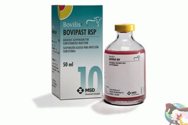 Вакцина Bovilis