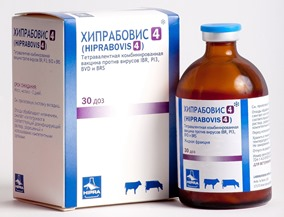 Хипрабовис-4