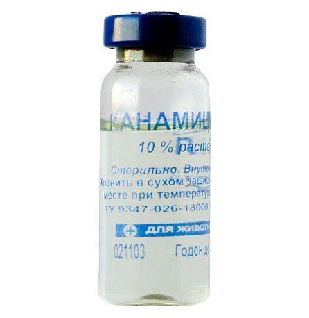 Канамицин 10%